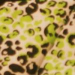2-Tone Leopard