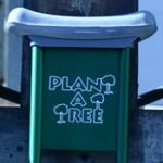Plant Ur Tree